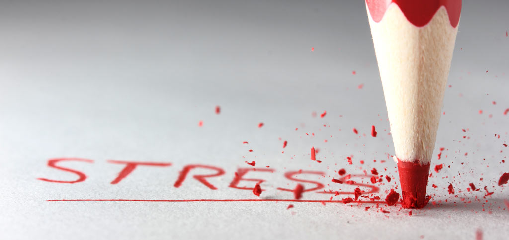 Stress and its Impact on the Brain