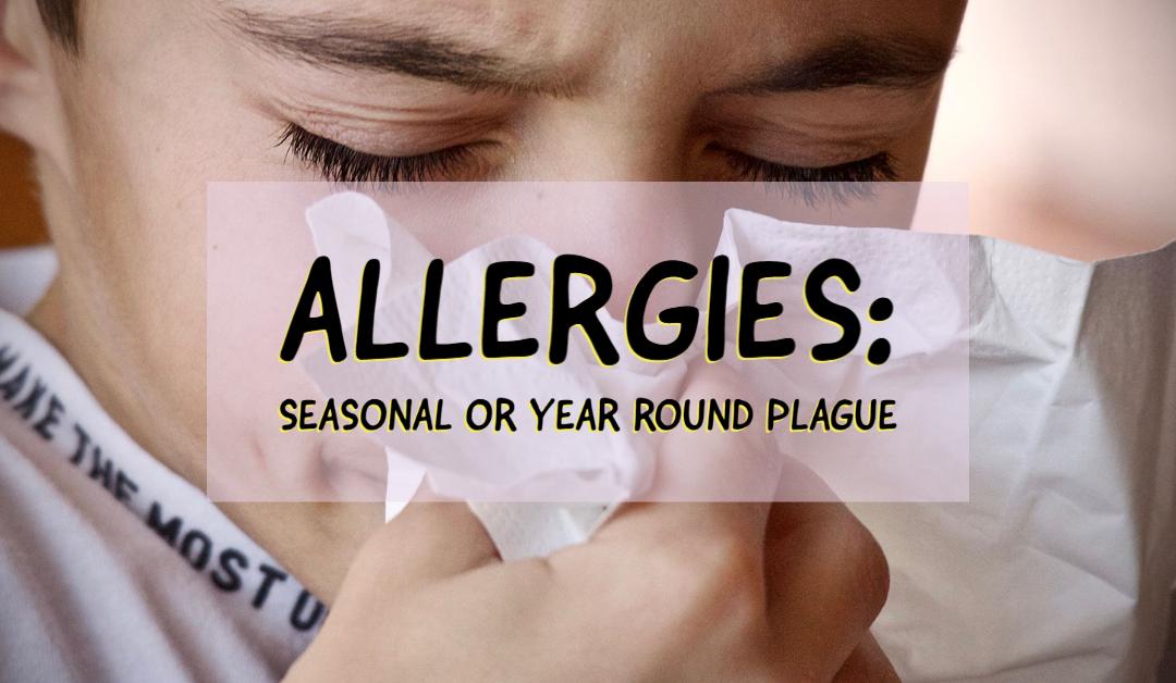 Allergies: Seasonal or Year Round Plague